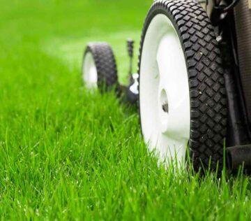 Garden maintenance 7