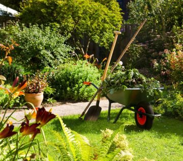 Gartenunterhalt 4